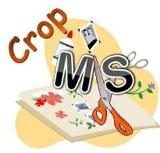 Crop MS logo